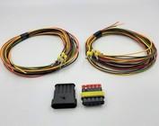 Tab & Plug + 2m. kabel 1 t/m 6-Posities