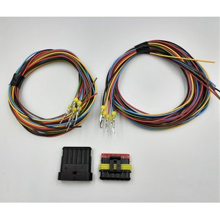 TE Connectivity AMP Superseal 1.5 Pigtail set: 6-Pos. Tab & Plug connector + 12x 2m. FLRY-B kabel 1,5mm2