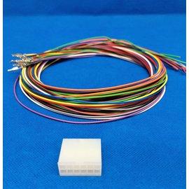 Molex Molex Minifit Plug - 12Pos.(2-Rij) + 12x 2m. kabel