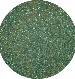Urban Nails Glitter Dust 41