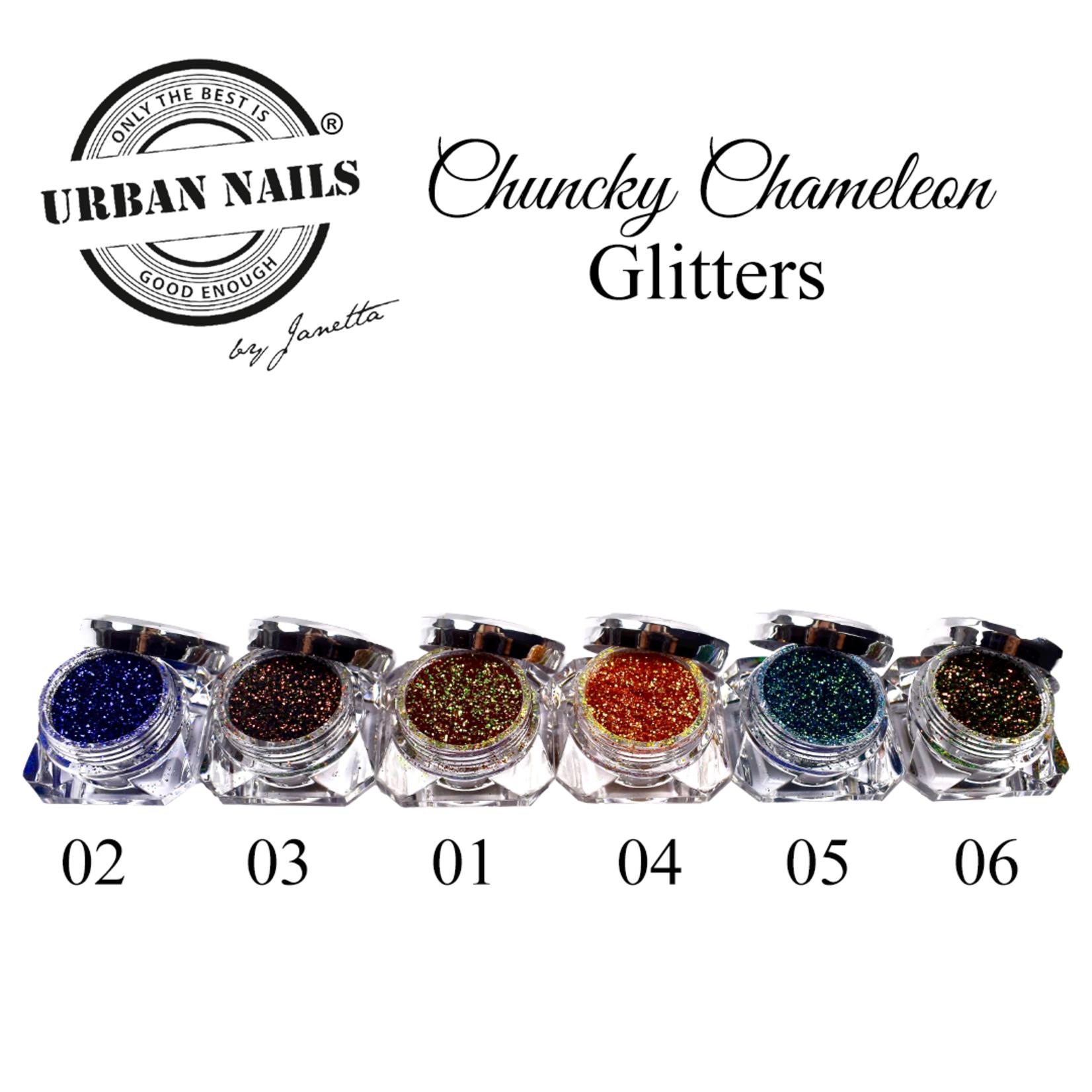 Urban Nails Chunky Chameleon set van 6