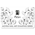 Moyra Scraper 11 Clear