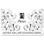 Moyra Scraper 11