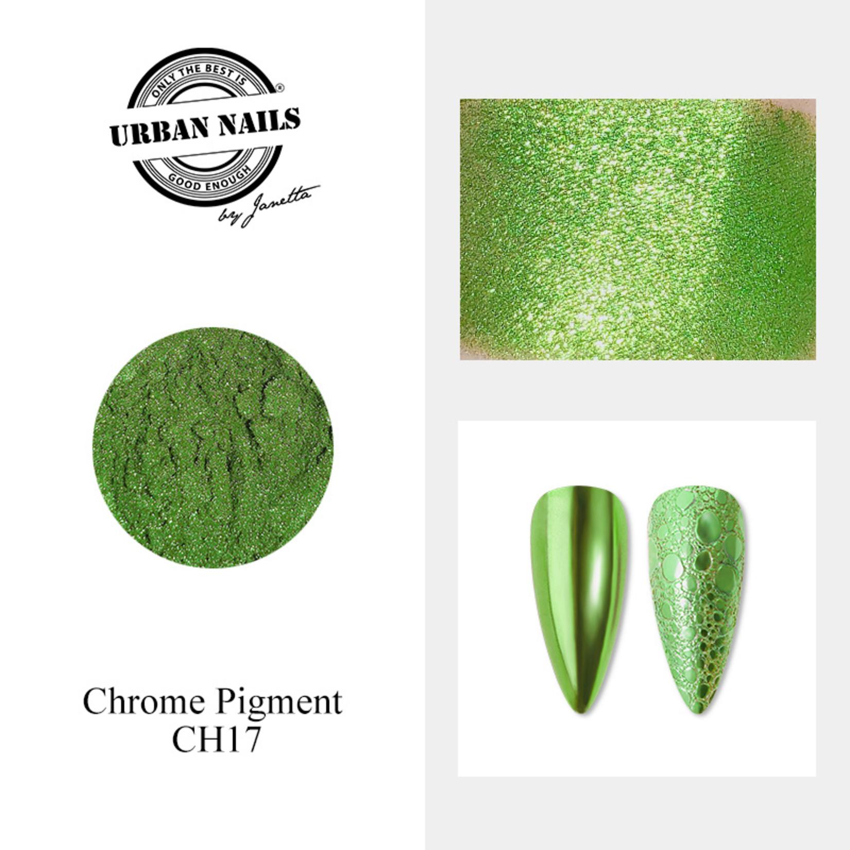 Urban Nails Chrome pigment 17 Fel Groen