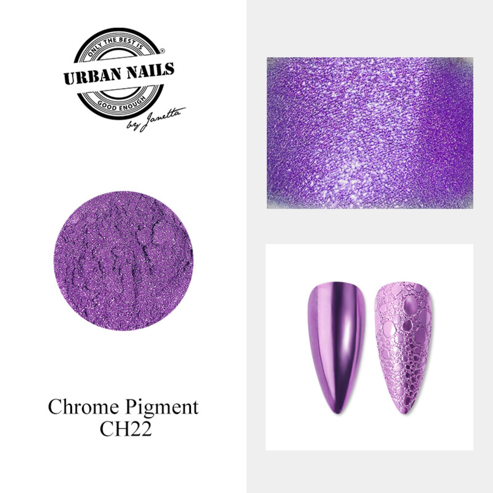 Urban Nails Chrome pigment 22 Fel Paars