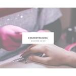 Roxenne Nails Examentraining 14 oktober