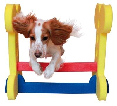 Rosewood Agility kleine hond horde