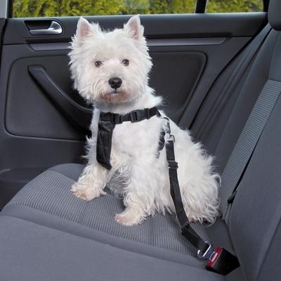 Trixie Trixie hondentuig auto incl gordel zwart