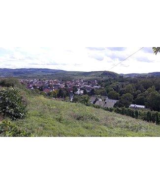 Sasbacher Winzerkeller - Kaiserstuhl Duitsland Sasbacher Rote Halde Spatburgunder Auslese Trocken