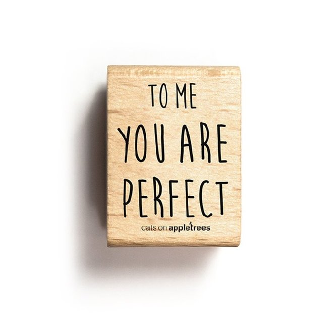 Stempel Tekst To me you are perfect 27258