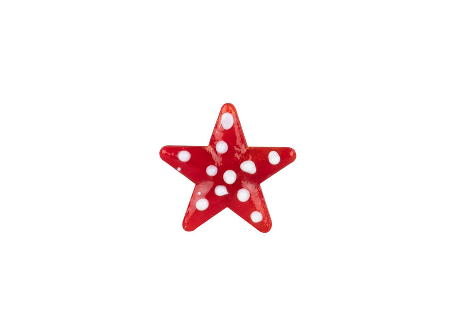 Gelukzakje Lucky star- Ster van glas