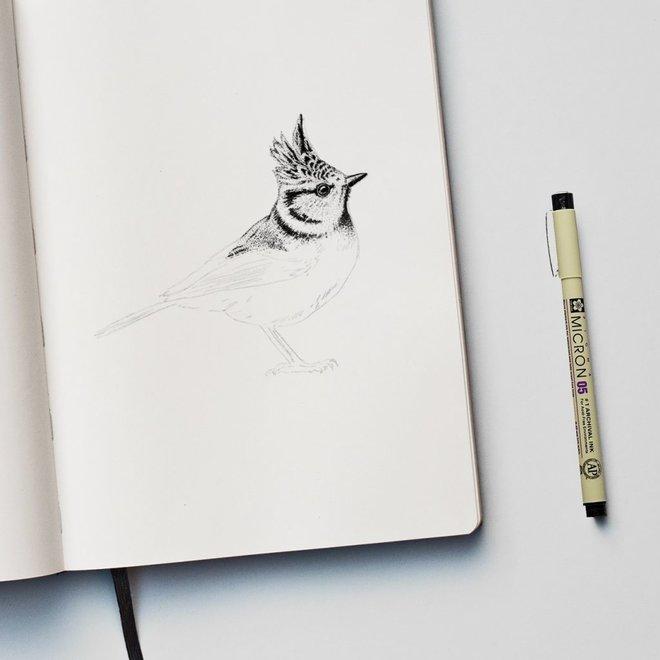Fine Forest wandsticker - Kuifmees