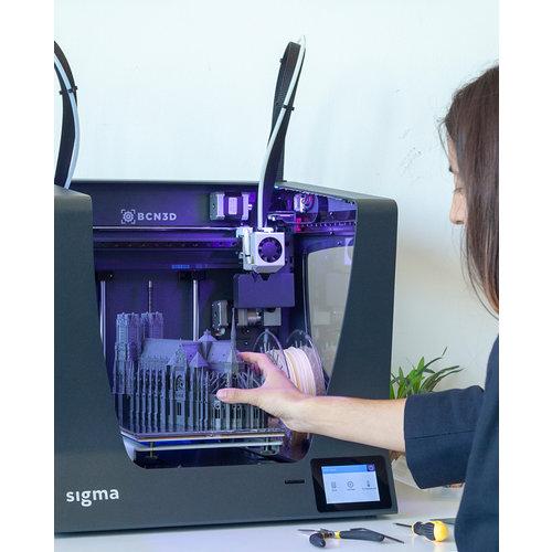 BCN3D Technologies BCN3D Sigma R19