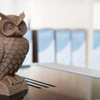 How To: 3D printen met Woodfill filament