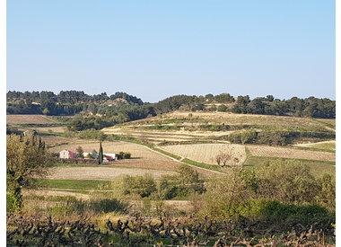 Rhône - Domaine de la Luminaille