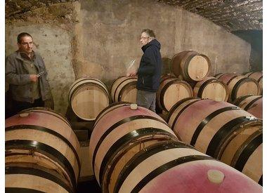Bourgogne - Côte de Nuits - Domaine Philippe Cheron