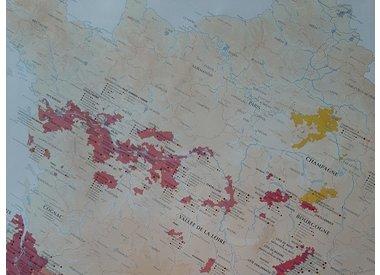 V.D.F. (appellation vin de France)