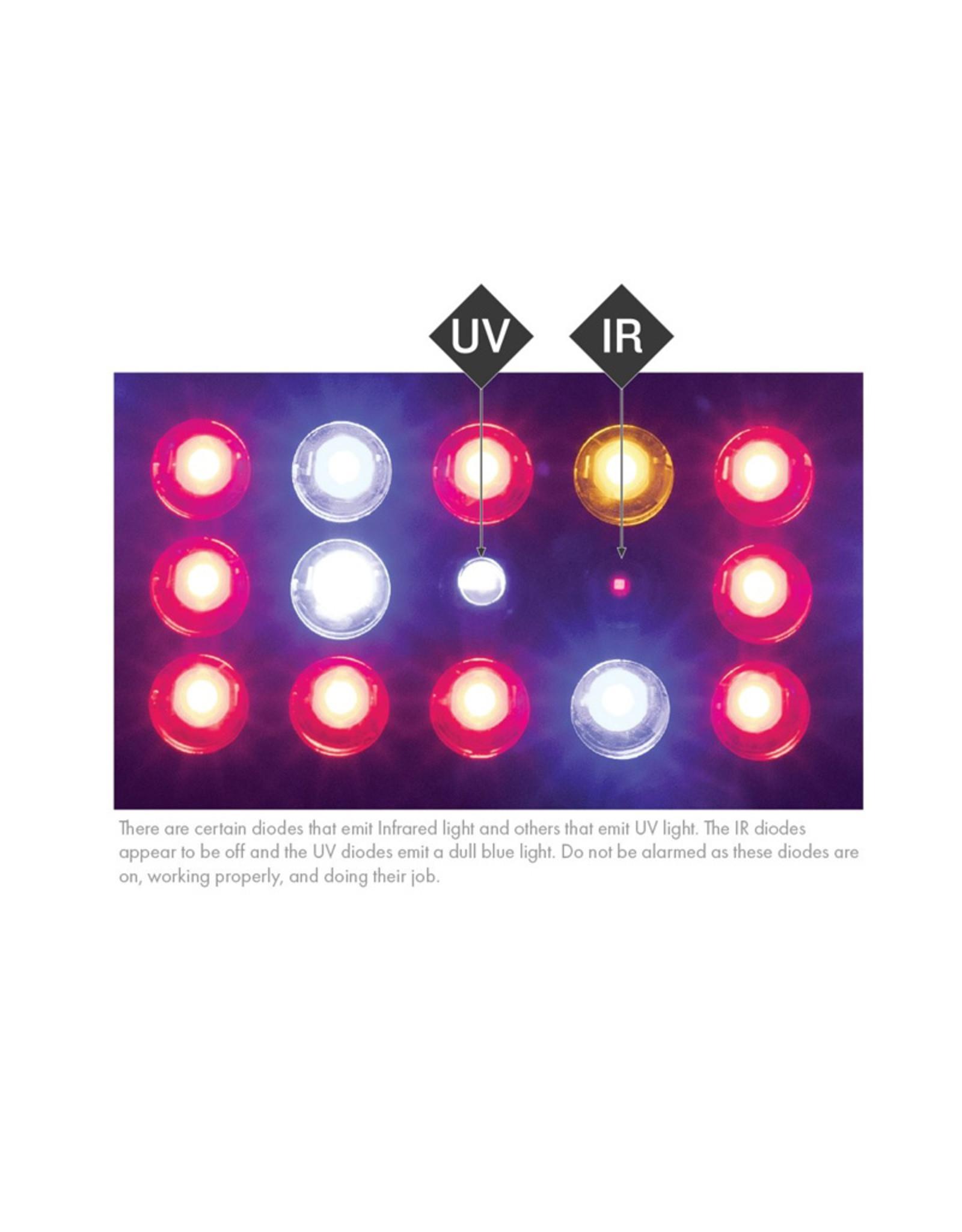 KIND LED KIND LED K3 Series 2 XL 300