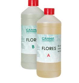 CANNA CANNA HYDRO FLORES A&B (SW)