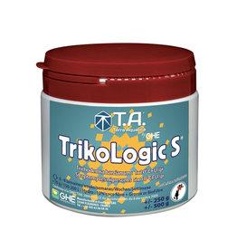 T.A. (GHE) T.A. TRIKOLOGIC S (SUBCULTURE)