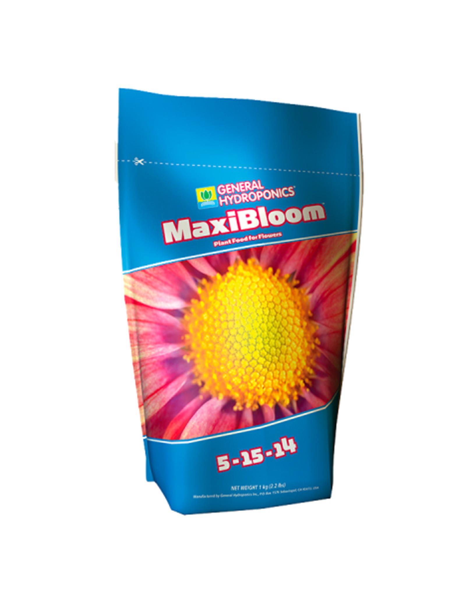 T.A. (GHE) T.A. MAXIBLOOM 1KG