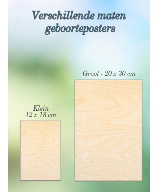 "Gepersonaliseerd Kraamcadeau - Houten Geboorte poster ""Daniël"""