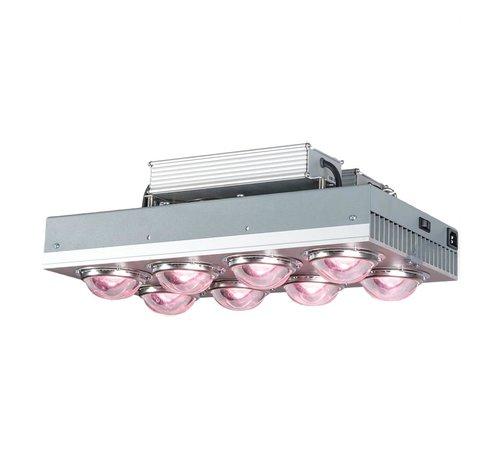 Spectrolight Spectro Light Xplosion 800