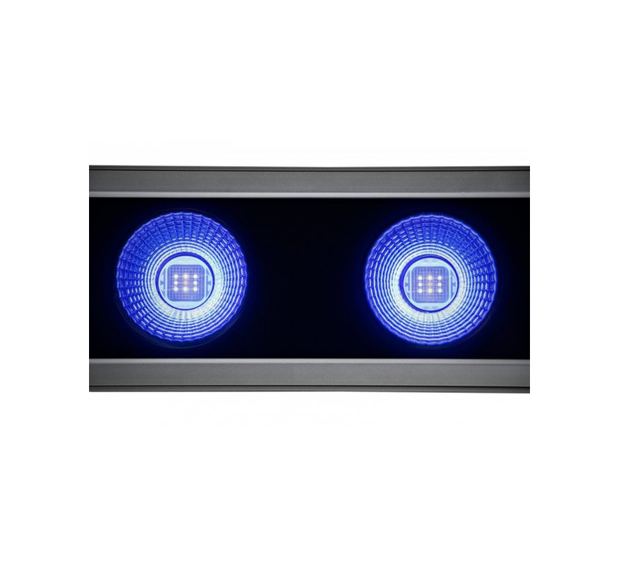 Kind LED X80 (Groei)