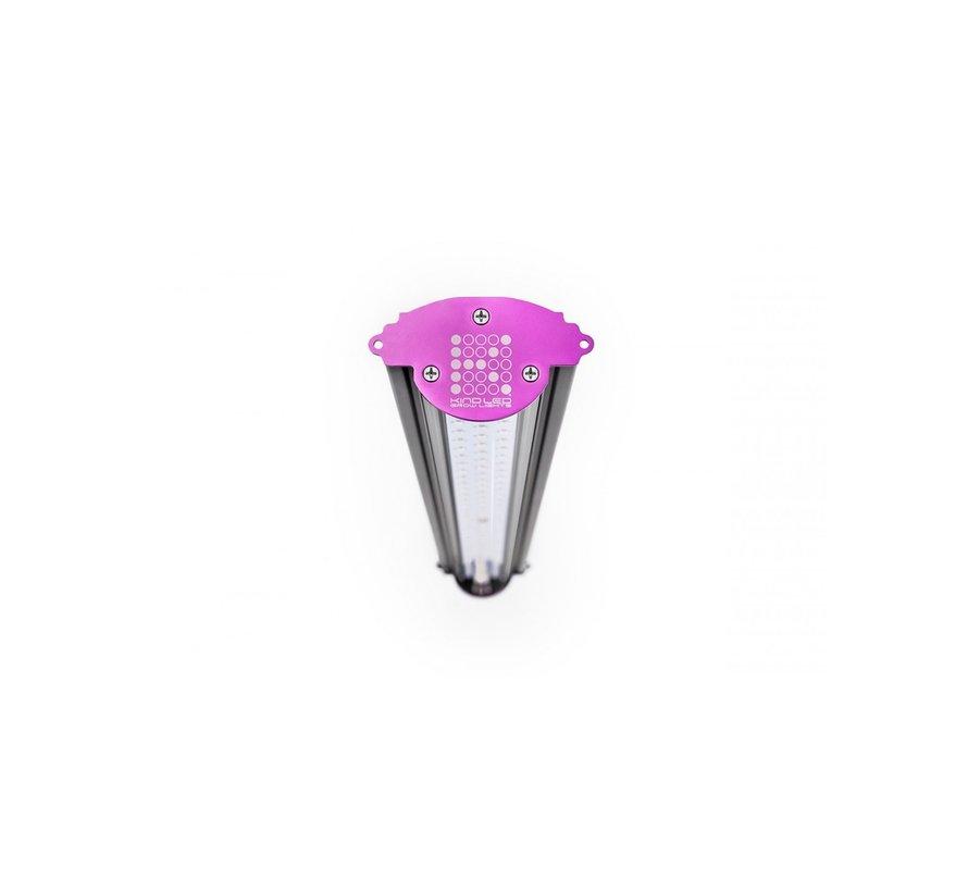 Kind LED X80 (Bloei)