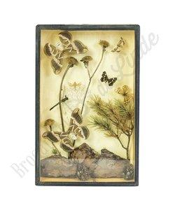 Vintage vlinderlijst No. 2
