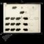 """Scheikundige schoolplaat """"Fenotype cavia No.1"""""""