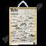 Zoölogische schoolplaat (Vissen van onze wateren)