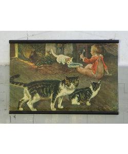 Zoölogische schoolplaat - Katten