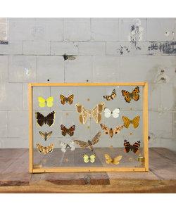 Vlinderlijst No. 58
