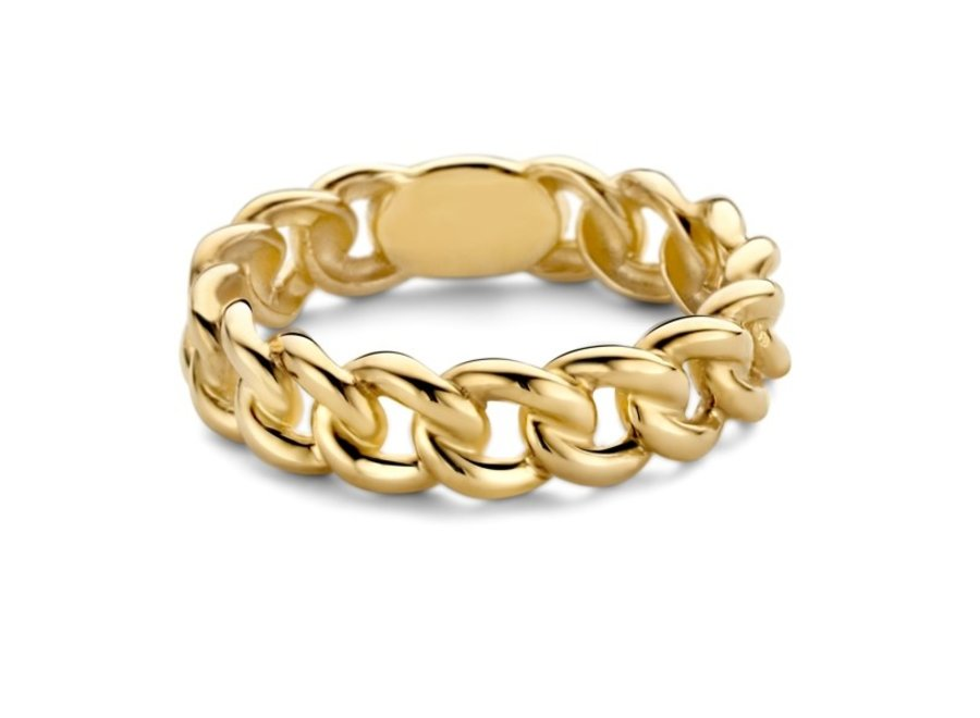 Chain Ring Big