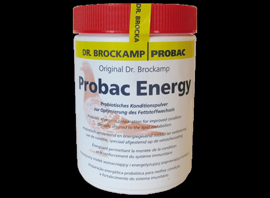 Probac Energy 500gr