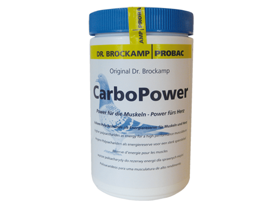 Carbo Power 500gr