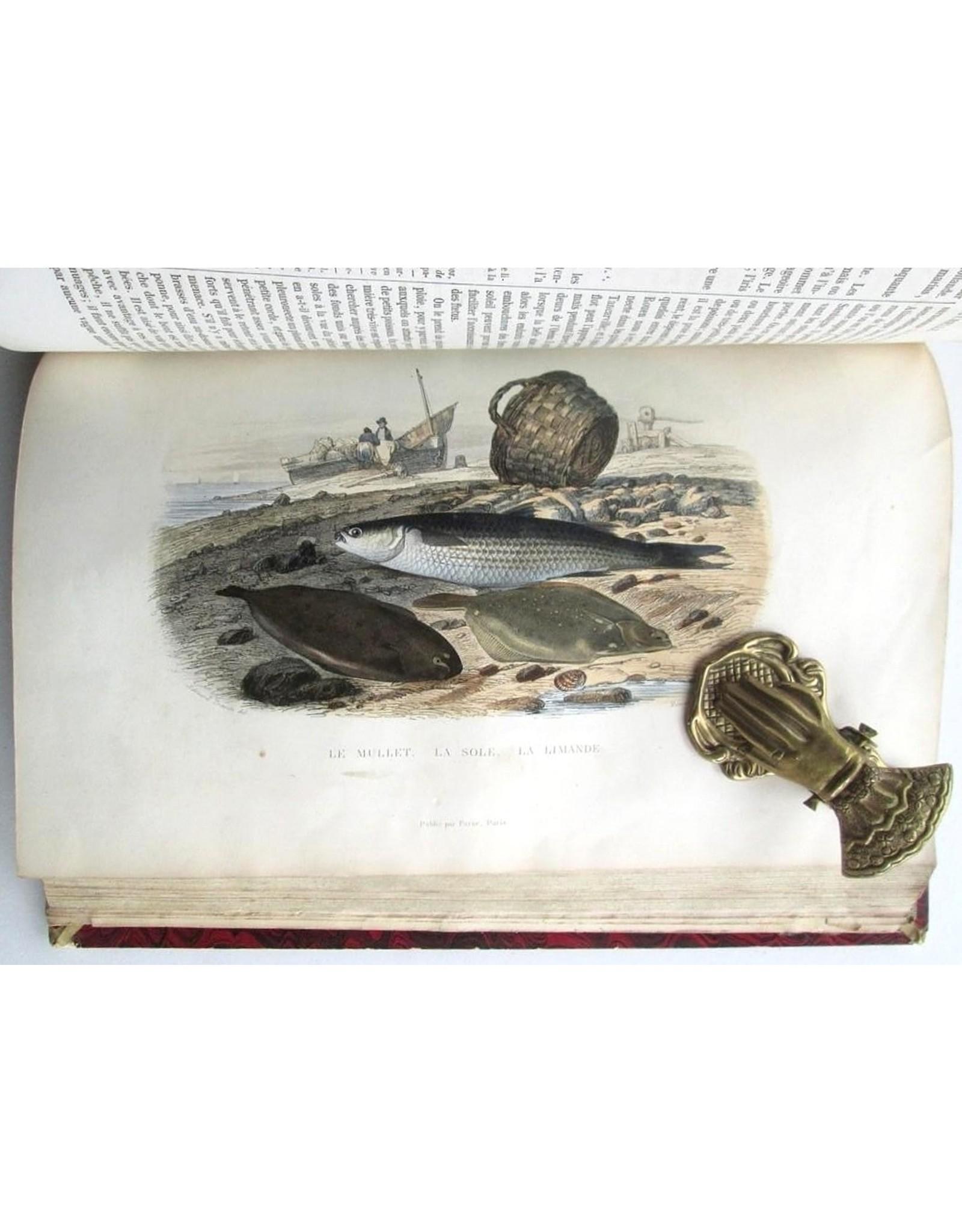 A.-G. Desmarest - Histoire Naturelle de Lacépède