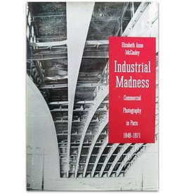 Elizabeth Anne McCauley - Industrial Madness - 1994