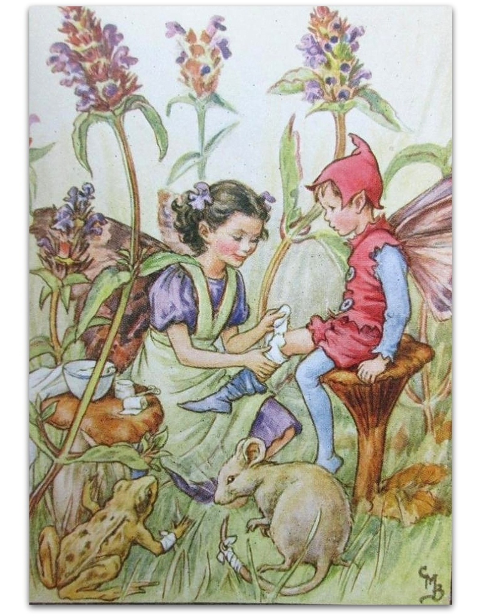 Cicely Mary Barker - Flower Fairies of the Wayside