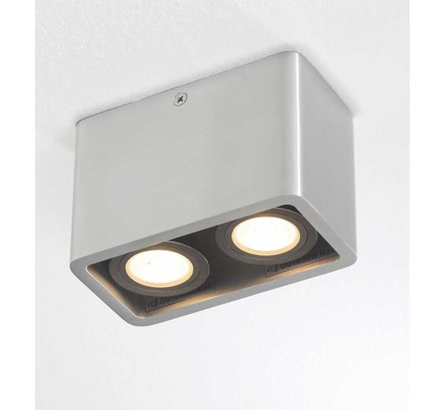 Artdelight Plafondlamp Bronx 2L - Aluminium
