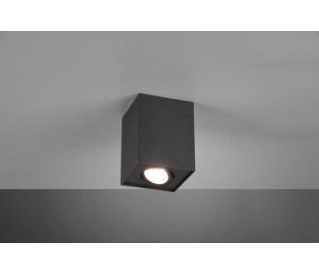 Trio Leuchten Plafondlamp Biscuit 1L - Zwart