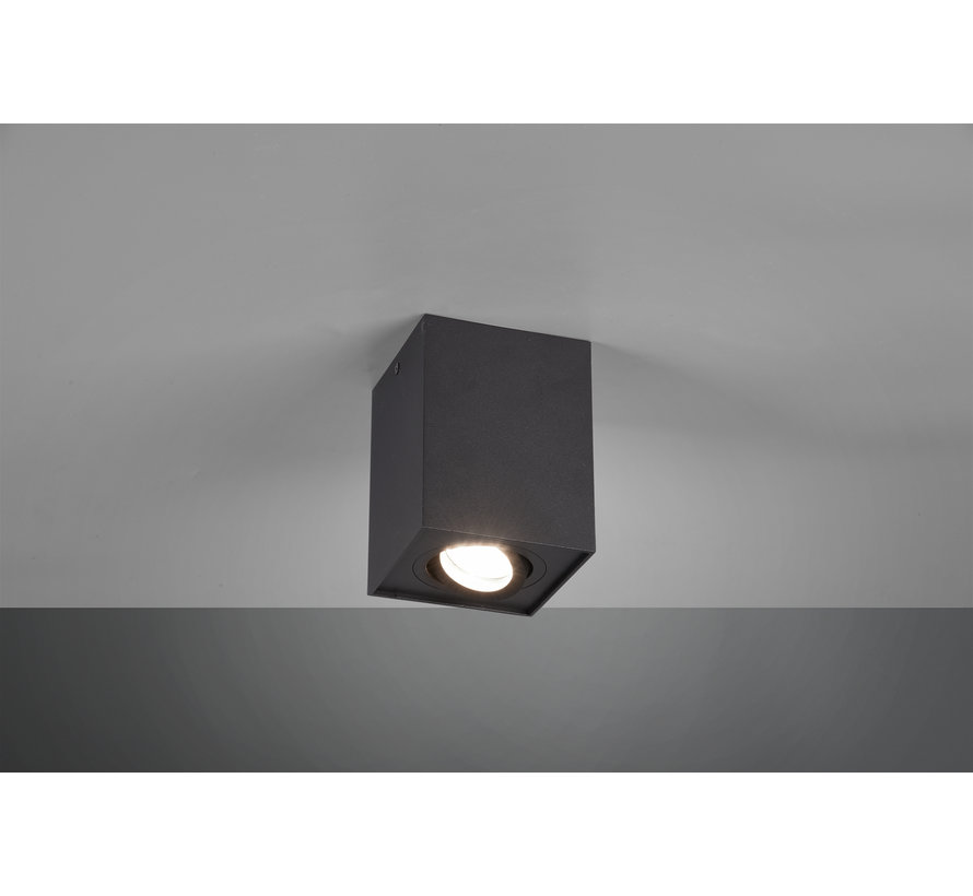 Plafondlamp Biscuit 1L - Zwart