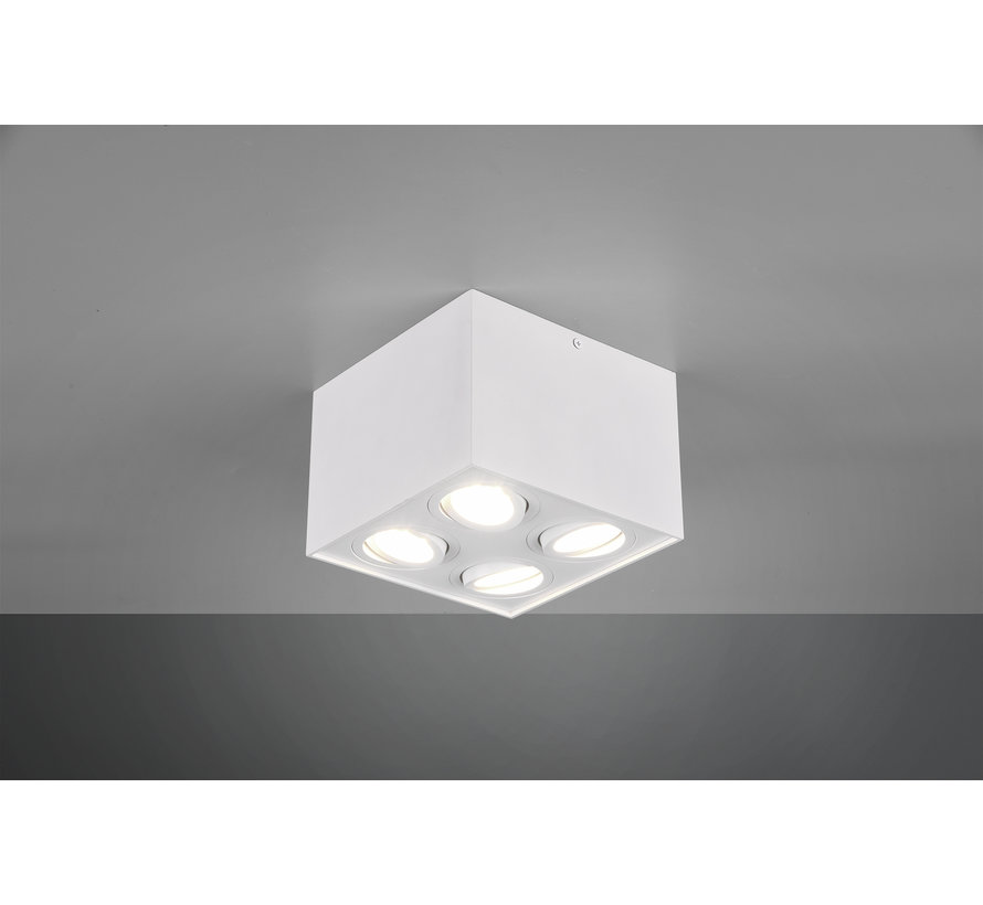 Plafondlamp Biscuit 4L - Wit
