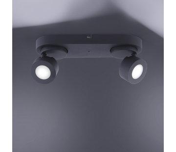 Trio Leuchten Plafondlamp Sancho 2L - Zwart