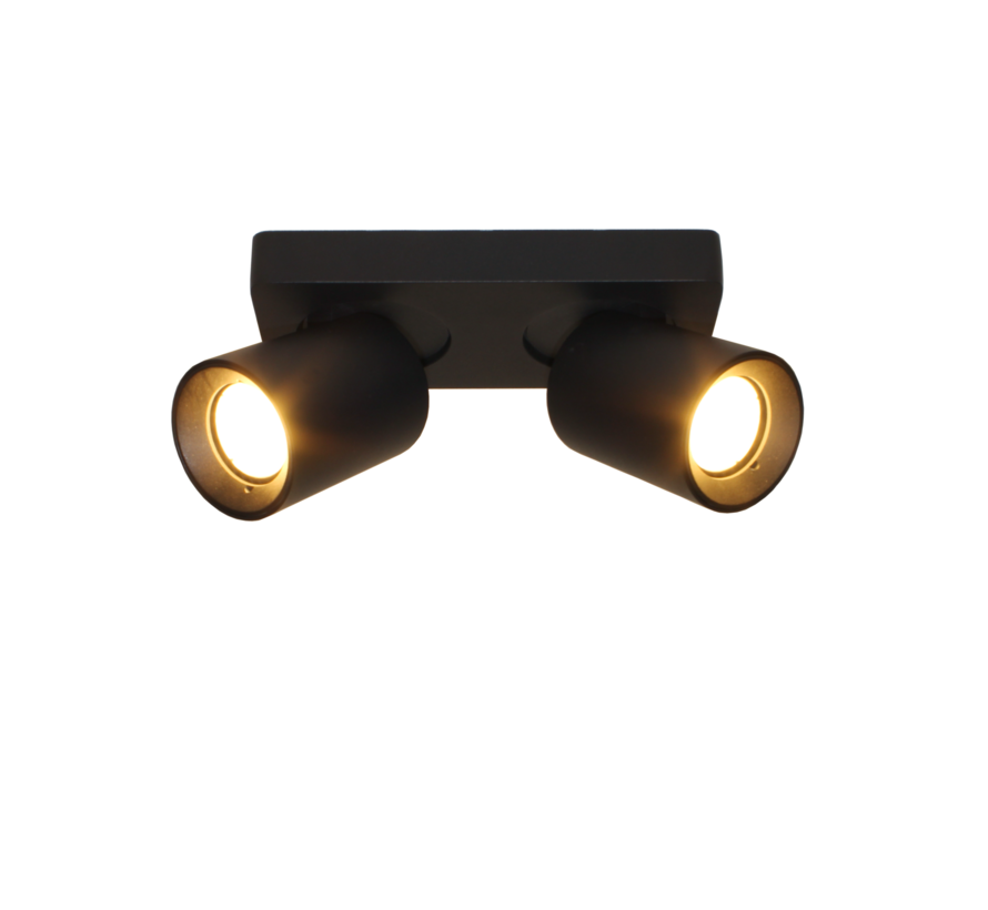 Plafondlamp Megano 2L - Zwart