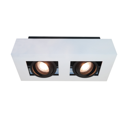Artdelight Plafondlamp Bosco 2L - Wit/Zwart