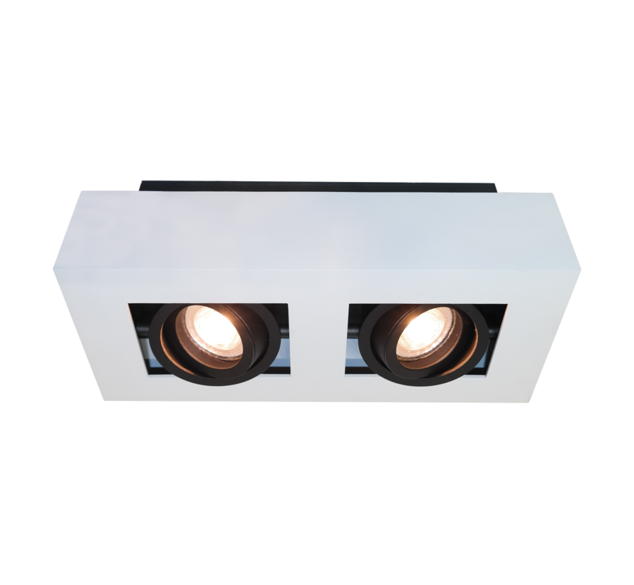 Plafondlamp Bosco 2L - Wit/Zwart