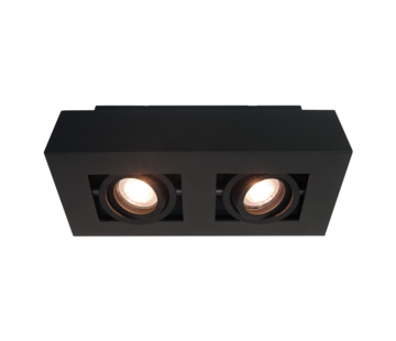 Artdelight Plafondlamp Bosco 2L - Zwart