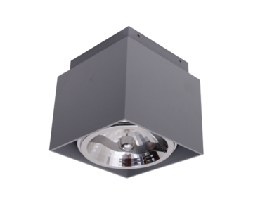 Artdelight Plafondlamp Square - Zilver